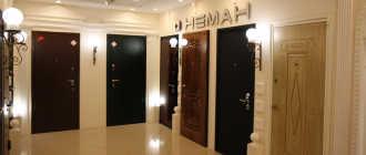 Обзор дверей Неман