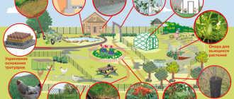 Обзор лучших садовых пластиковых сеток