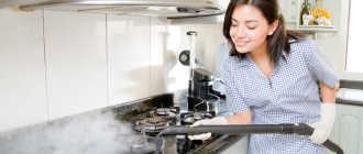 Нужен ли пароочиститель для дома